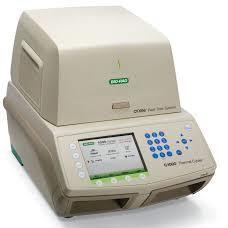Termociclador BIORAD CFX96